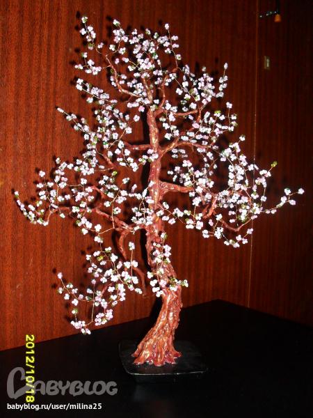 сакура, сделанная в подарок мужу.