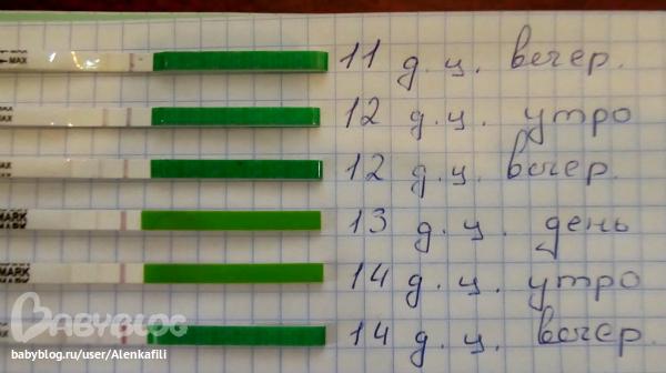 Тест на овуляцию что показывает после овуляции - e4ae
