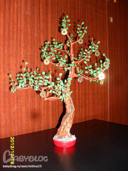 сакура, сделанная в подарок мужу. а вот и мои деревца. глазастое дерево от сглаза.