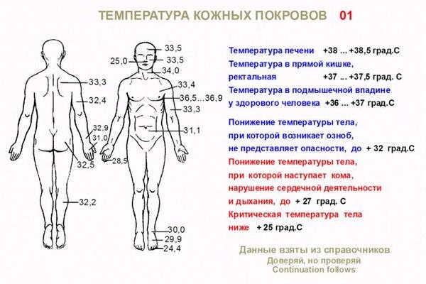 Как поднять температуру тела в домашних условиях быстро