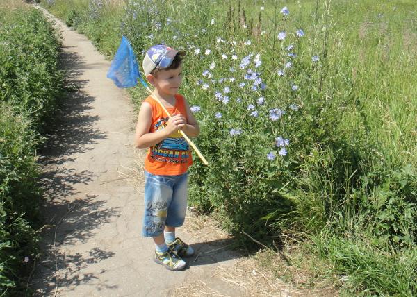 что значит иди на хутор бабочек ловить