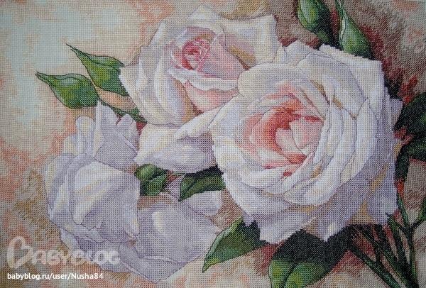 http://062012.imgbb.ru/4/9/7/49766ef474bbbdbd5bb128751d35f4c9.jpg