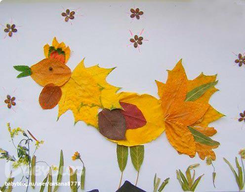 осенние листья гербарий картинки