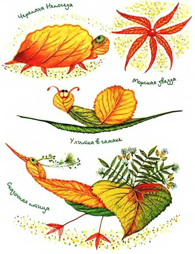 аппликации с гербария фото