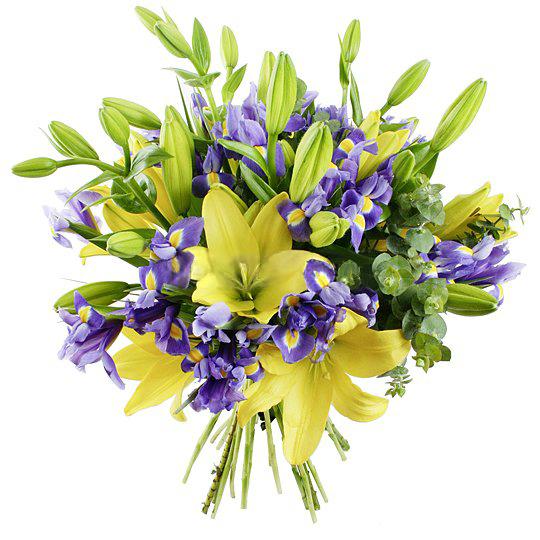 С какими цветами сочетаются ирисы в букете
