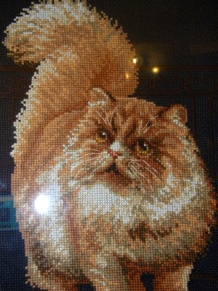 Вышился такой котик в подарок