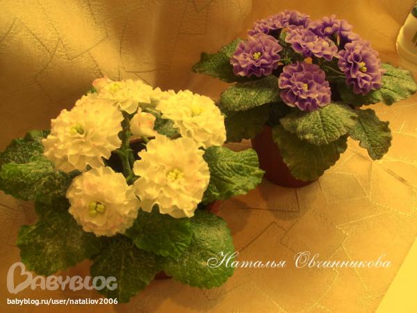Фиалки слеплены полностью вручную из глины для цветов Madonna Lily.