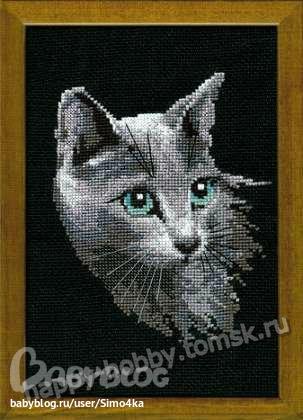 """""""Серый кот"""" (Риолис)"""