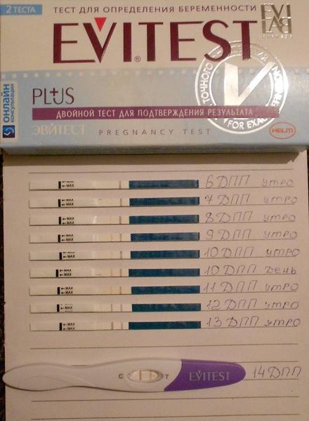 Тесты на беременность фото после переноса эмбрионов