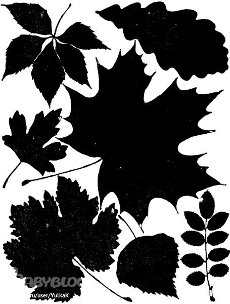 Трафареты листьев осенних рамок фото 597-495