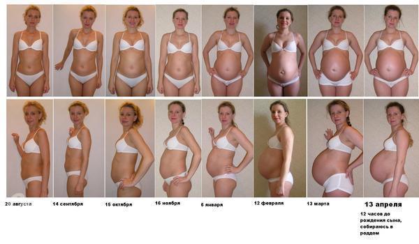 фото живот 5 месяц беременности