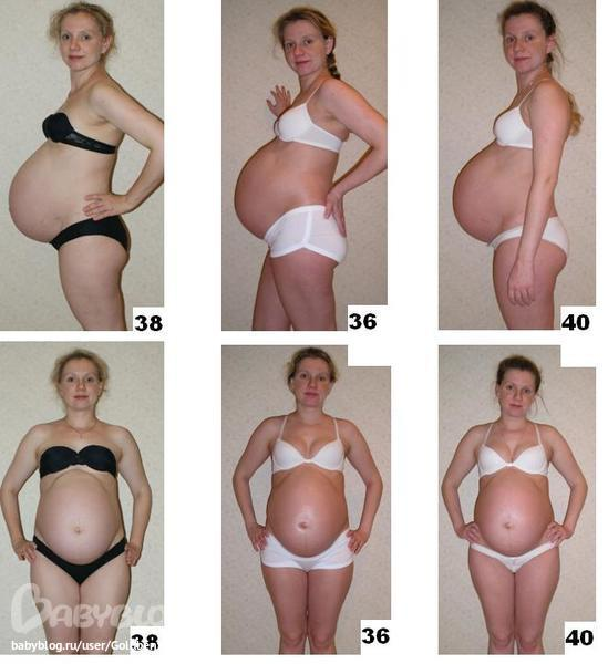 Сравнить живот беременной девочкой и мальчиком фото 5