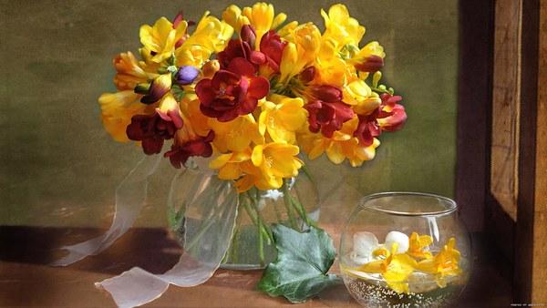 hd обои цветы, лето, ваза, фрезия, Букет, натюрморты 640 x 480 для рабочего стола бесплатно скачать.