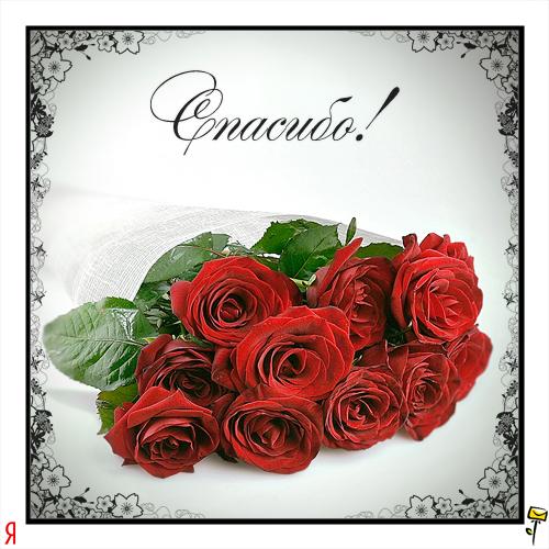 http://062012.imgbb.ru/d/9/1/d918c34ffea68ef47bfccb3e7f315a2b.jpg